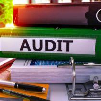 Agile Audit: Assuring Post-COVID-19 Relevance